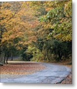Worlds Ends State Park Road Metal Print