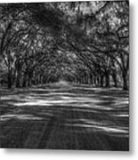 Wormsloe Plantation 2 Live Oak Avenue Art Metal Print