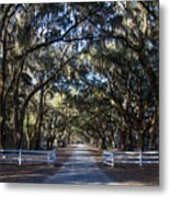 Wormsloe Avenue #2 Metal Print
