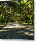 Shadows Of Wormsloe Plantation Oak Avenue Georgia Art Metal Print