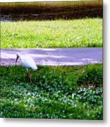 Woways Me Metal Print