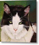 Wozzle - Domestic Cat Metal Print