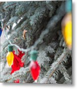 Wrap A Tree In Color Metal Print