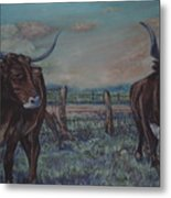 Wright Longhorns Metal Print
