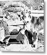 Wwi, Nell British Messenger Dog Metal Print