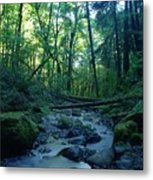 Wyeth Creek Metal Print