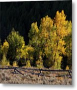 Wyoming Autumn Color One Metal Print