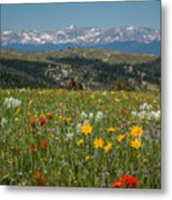 Wyoming's Winds Metal Print