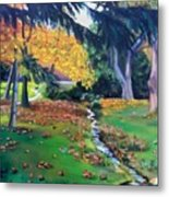 Wyomissing Creek Metal Print