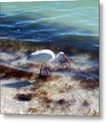 Yay Seaweed Metal Print