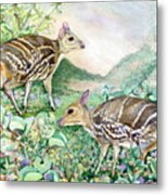 Yello-striped Mouse Deer Metal Print