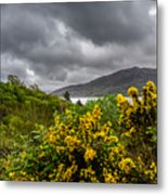 Yellow Flowers And Grey Clouds, Stormy Weather Over Sea In Scotland. Metal Print