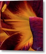 Yellow And Purple Metal Print