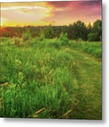 Retzer Nature Center - Yellow And Purple Summer Sunset  Metal Print