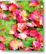 Yellow And Red Fall Maple Leaves Metal Print