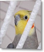Yellow And Red On White Metal Print