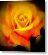 Yellow And Red Rose Metal Print