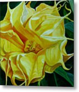 Yellow Blast Metal Print