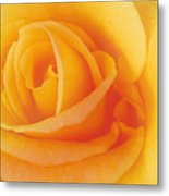 Yellow Blend Metal Print