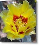 Yellow Blossom Metal Print