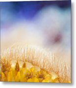 Yellow Coral Reef Macro Metal Print