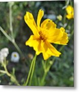 Yellow Cup Metal Print