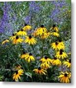 Yellow Daisies And Purple Sage Metal Print