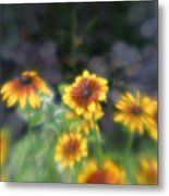Yellow Daisies In Monets Garden Metal Print