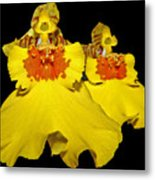 Yellow Dresses Metal Print