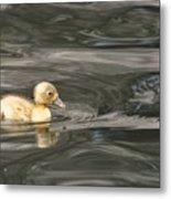 Yellow Duckling Metal Print