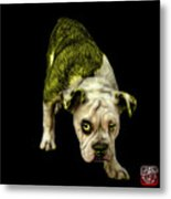 Yellow English Bulldog Dog Art - 1368 - Bb Metal Print