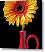 Yellow Fancy Daisy In Red Vase Metal Print by Garry Gay