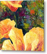 Yellow Field Poppies Metal Print