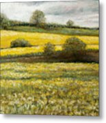 Yellow Fields Metal Print