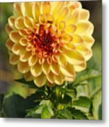 Yellow Flora Metal Print