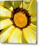 Yellow Flower In The Sun Metal Print
