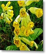 Yellow Flowers 2 Metal Print