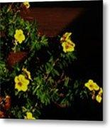 Yellow Flowers In The Sun Metal Print