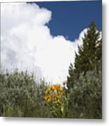 Yellow Flowers White Cloud Metal Print