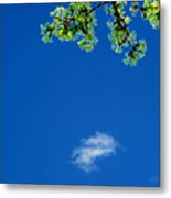 Yellow Green Flowers And Sky Ae 2  Metal Print