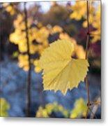 Yellow Leaf Newton Upper Falls Fall Foliage Metal Print
