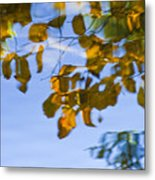 Yellow Leaf Reflections Metal Print