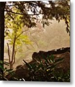 Yellow Leaves In The Mist Metal Print