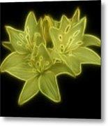 Yellow Lilies On Black Metal Print by Sandy Keeton