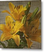 Yellow Lilies With Old Canvas Texture Background Metal Print