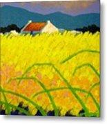 yellow Meadow Ireland Metal Print