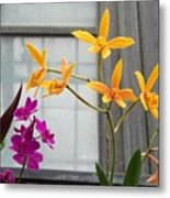 Yellow Orange And Purple Flowers Metal Print