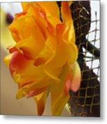 Yellow-orange Flower Metal Print