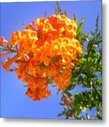 Yellow-orange Horn Flowers 01 Metal Print
