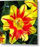 Yellow Red Flower Metal Print